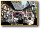 敷島神社・初詣